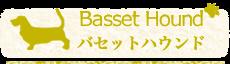 バセットハウンド