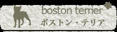 ボストン・テリア